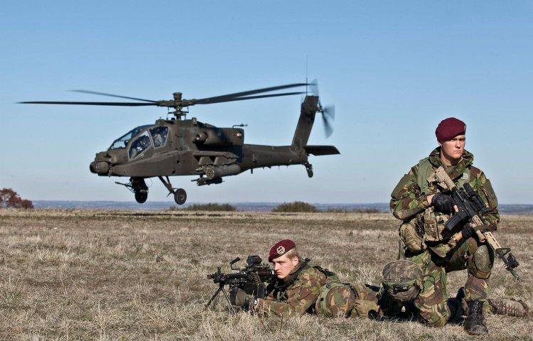 армия дании